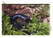 Black Salamander Carry-all Pouch
