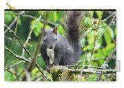 Black Squirrel In The Cherry Tree Carry-all Pouch