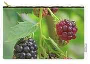 Blackberry Carry-all Pouch