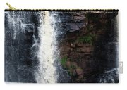 Blackwater Falls #5 Carry-all Pouch