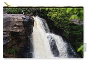 Blackwater Falls #6 Carry-all Pouch