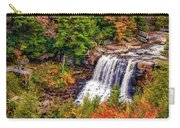 Blackwater Falls Wv Carry-all Pouch