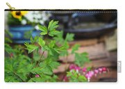 Bleeding Heart And Fountain Carry-all Pouch