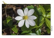 Blood Root Or Blood Wort Carry-all Pouch