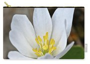 Bloodroot 3 Carry-all Pouch