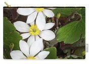 Bloodroot Trio Carry-all Pouch