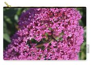 Blooming Pink Phlox Flowers In A Spring Garden Carry-all Pouch