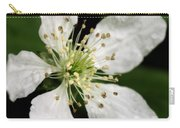 Blossom Square Carry-all Pouch