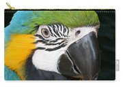 Blue And Gold Macaw Freehand Painting Square Format Carry-all Pouch