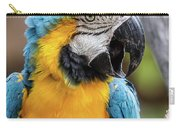 Blue And Yellow Macaw Vertical Carry-all Pouch