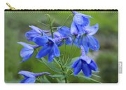 Blue Bell Carry-all Pouch