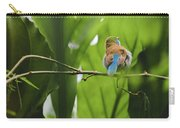 Blue Bird Has An Itch Carry-all Pouch by Raphael Lopez
