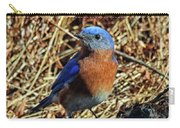 Blue Bird In The Grass Carry-all Pouch