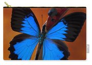 Blue Butterfly On Violin Carry-all Pouch