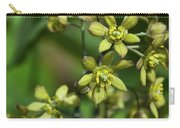 Blue Cohosh 3 Carry-all Pouch