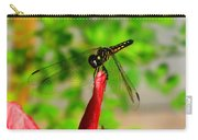 Blue Dasher Damselfly Carry-all Pouch