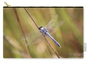 Blue Dragonfly Against Green Grass Carry-all Pouch
