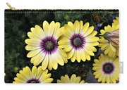 Blue Eyed Beauty African Daisy Carry-all Pouch