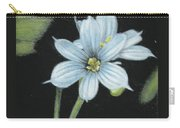 Blue Eyed Grass - 2 Carry-all Pouch