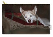 Blue Eyes Carry-all Pouch by Colleen Taylor
