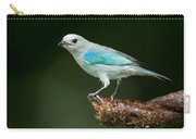 Blue-gray Tanager Thraupis Episcopus Carry-all Pouch