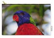 Blue Head Bird Carry-all Pouch