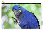 Blue Hyacinth Macaw Carry-all Pouch