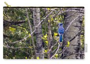 Blue Jay 2 Carry-all Pouch