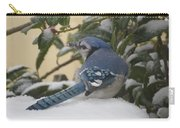 Blue Jay Beauty Carry-all Pouch