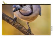 Blue Jay In Golden Light Carry-all Pouch