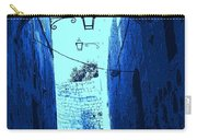 Blue Maltese Arch Carry-all Pouch