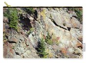 Blue Ridge Mountain Carry-all Pouch