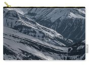 Blue Rockies Carry-all Pouch