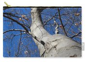 Blue Sky Beech Tree Carry-all Pouch