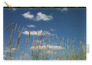 Blue Sky Drive-in Carry-all Pouch