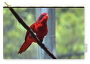 Blue-streaked Lory Carry-all Pouch