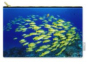 Blue Stripe Snapper Carry-all Pouch