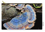 Blue Turkeytail Fungi Carry-all Pouch