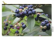 Blueberry Bounty Carry-all Pouch