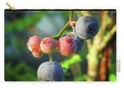 Blueberry Morning Carry-all Pouch