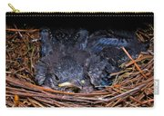 Bluebird Babies Dreaming Of Flight Carry-all Pouch