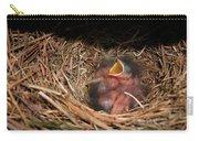 Bluebird Babies Carry-all Pouch