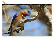 Bluebird Curiousity Carry-all Pouch