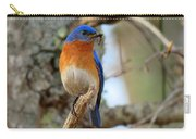 Bluebird Dad Carry-all Pouch