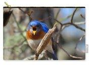 Bluebird Temper Carry-all Pouch