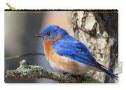Bluebird Vibrance Carry-all Pouch