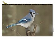 Bluejay 012 Carry-all Pouch