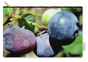Blues In The Florida Berries Carry-all Pouch