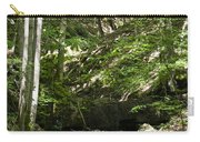 Bluestone State Park Mountain Stream West Virginia Carry-all Pouch