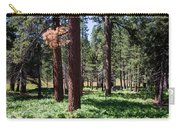 Bluff Lake Ca Fern Forest 2 Carry-all Pouch